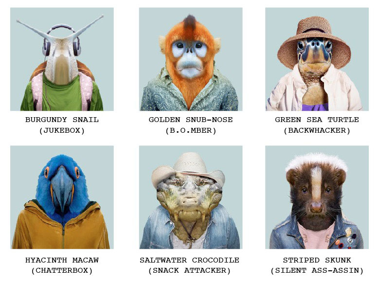 commuter-critters-group-photo